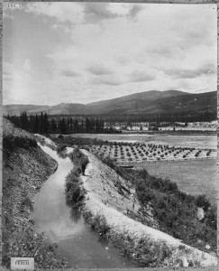 Irrigation ditch at Peach